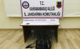 Kahramanmaraş'ta uyuşturucu operasyonu: 4 gözaltı