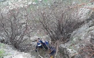 Kayalıklarda mahsur kalan 4 küçükbaş hayvan kurtarıldı