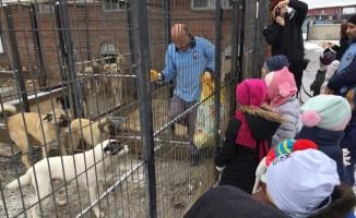 Minik öğrenciler sokak hayvanlarını unutmadı