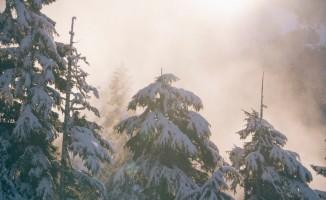 Uşak'ta yoğun kar yağışı bekleniyor