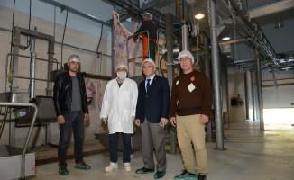 Başkan Göven, Mezbahane'yi inceledi