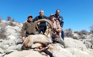 Boynuz uzunluğu 127 santim olan yaban keçisi avlandı