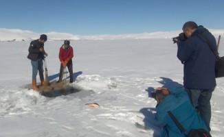 Buzda balık avına fotoğrafçı ilgisi