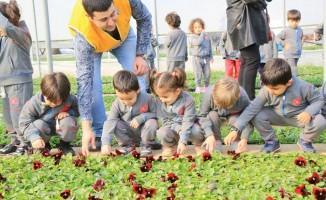Çocuklar çiçek üretim serasını ziyaret etti