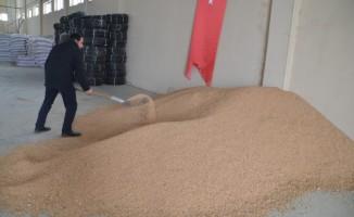 Devlet desteğiyle kurulan fabrikada ucuz nohut satışı