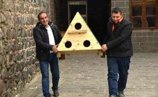 Diyarbakır'da kedi evi projesi devam ediyor