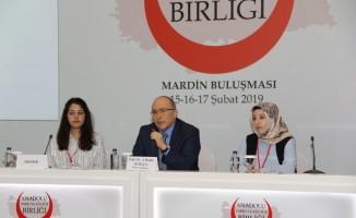 """Mardin  """"Anadolu Tarih ve Kültür Birliği Buluşmaları""""na  ev sahipliği yapıyor"""