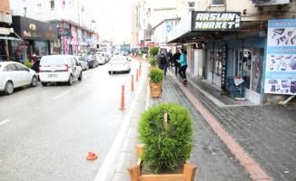 Samandağ'da saksılı ağaçlar tahrip edildi