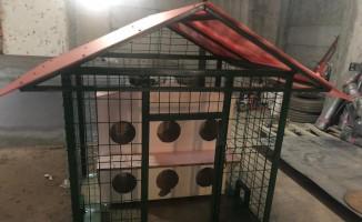 Silopi'de sokak kedileri için barınak yapıldı