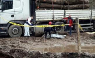 Tırdan yuvarlanan tomruk şoförün ölümüne neden oldu