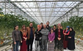 VANTB Başkanı Nayif Süer, eksi 40 derecede üretilen domates serasını ziyaret etti