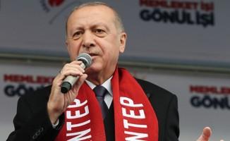 Cumhurbaşkanı Erdoğan: Yeni Zelanda'daki terör saldırısında 3 Türk yaralandı