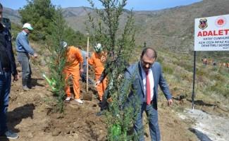 Hükümlüler Adalet Ormanı'na fidan dikti