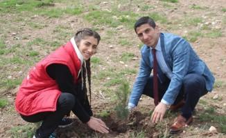 Genç Gönüllüler fidanları toprakla buluşturdu