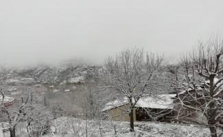 Nisan karı üreticiyi endişelendirdi