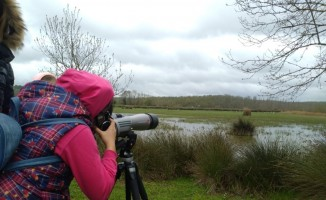 Sarıkum Tabiatı Koruma Alanı'nda doğa eğitimi
