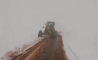Siirt'te 14 köy yolu kar nedeniyle ulaşıma kapandı
