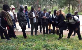 TİKA, Gana-Akra ve Liberya-Paynesville Belediyesi çalışanlarına park ve bahçecilik eğitimi verdi