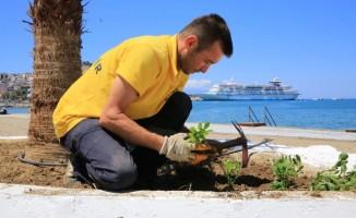 Aydın Büyükşehir Belediyesi bayram tatiline hazırlanıyor