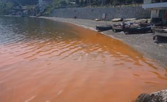 Bursa'da deniz kızıla boyandı, uzmanlar açıkladı: