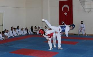 Gençlik Haftası Taekwondo Turnuvası yapıldı
