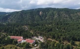 Gerede'de 'Millet Bahçesi' ihaleye çıkıyor
