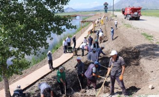 Kaz gölüne 3 bin adet lavanta dikildi