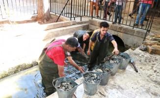 ŞUSKİ'nin tarihi alanlardaki bakım ve onarım çalışmaları