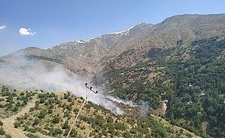 Bahçesaray'da orman yangını