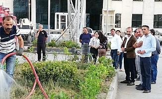 Belediye encümenleri caddeleri yeşillendirdi