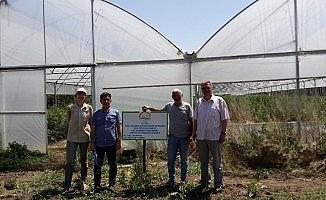 Erzincan'da genç çiftçiler üretiyor