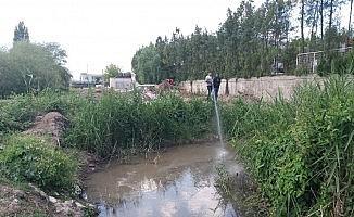 Germencik Belediyesi larvasit ilaçlamalarına devam ediyor