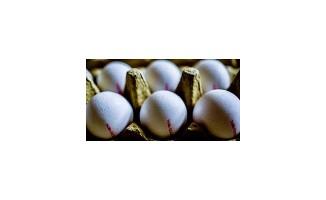 IKBY'den Bağdat'ta yumurta atağı