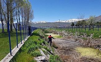 Tatvan Belediyesinden sivrisinekle mücadele çalışması