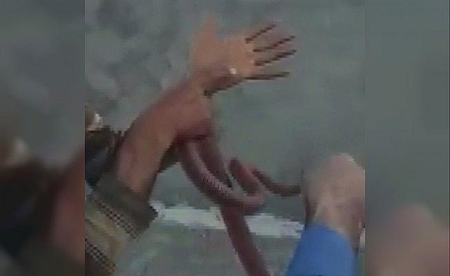 Yakaladığı yılana elini ısırttı