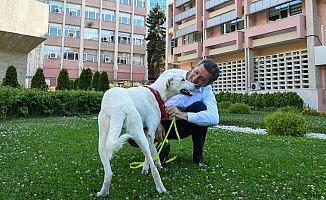 Bakan Selçuk'tan müjdeli haber!!!!
