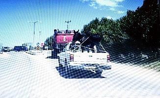 Eşeğin kamyonet ile yolculuğu görenleri şaşırttı