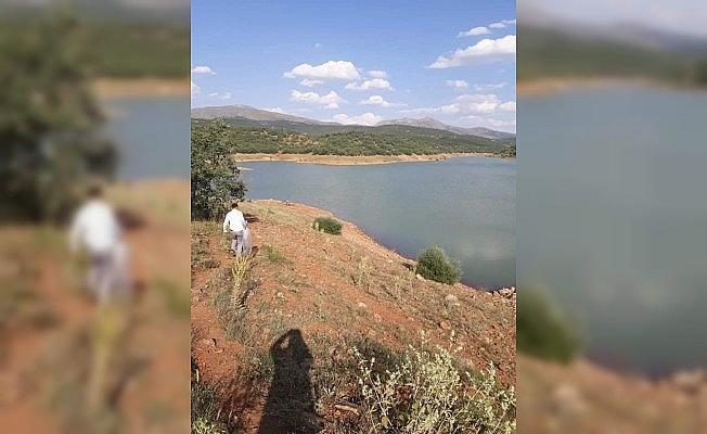 Konya'daki su kaynaklarına 206 bin yavru sazan balığı desteği