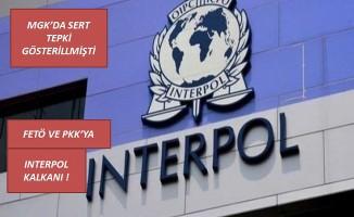 FETÖ ve PKK'ya Interpol kalkanı .