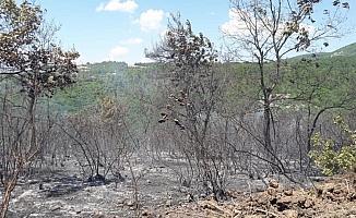 Mustafakemalpaşa'da orman yangını büyümeden söndürüldü