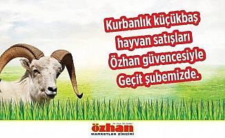 Özhan'da kurbanlık satışları başladı