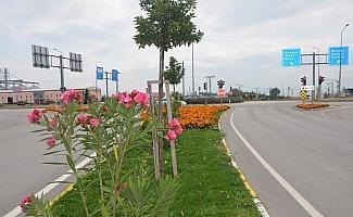 Suluova mevsim çiçekleriyle süslendi