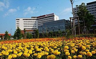 Yeşil dostu hastane