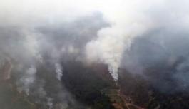 Teröristler 30 hektarlık ormanlık alana zarar verdi