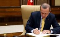 """Erdoğan, """"Türk-Rus"""" ilişkilerine dair makale kaleme aldı"""