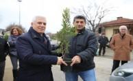 Nilüfer Belediyesi vatandaşlara fidan dağıttı
