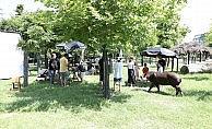 Bursa Hayvanat Bahçesi doğal film platosu oldu